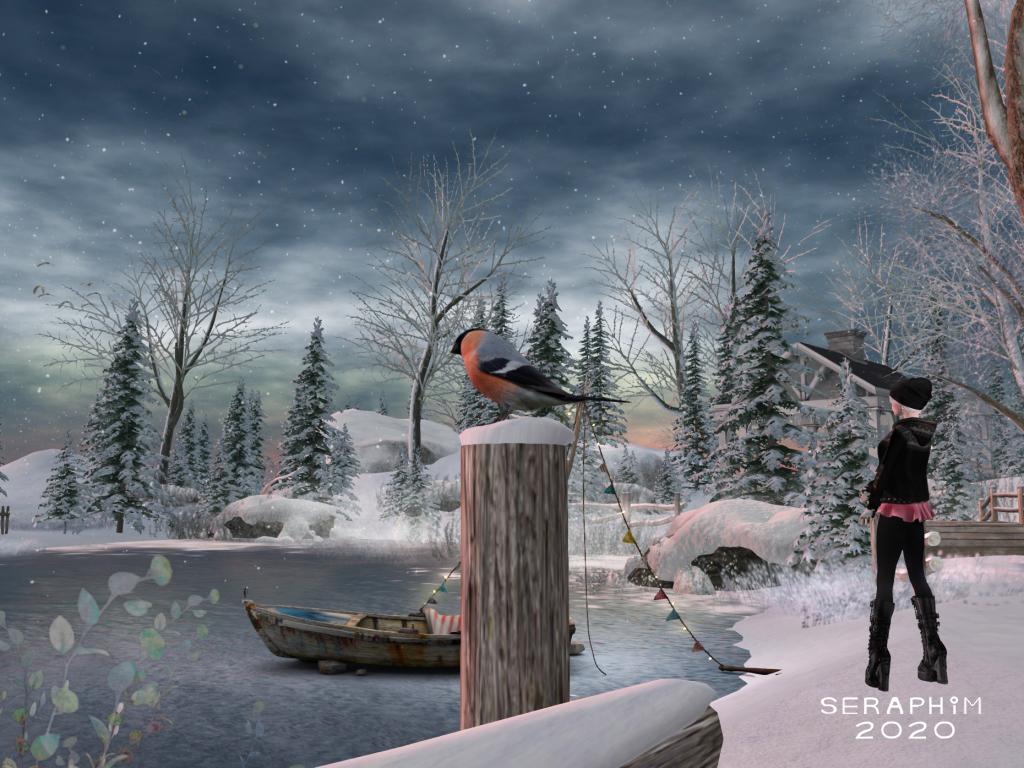 SnowFalls2
