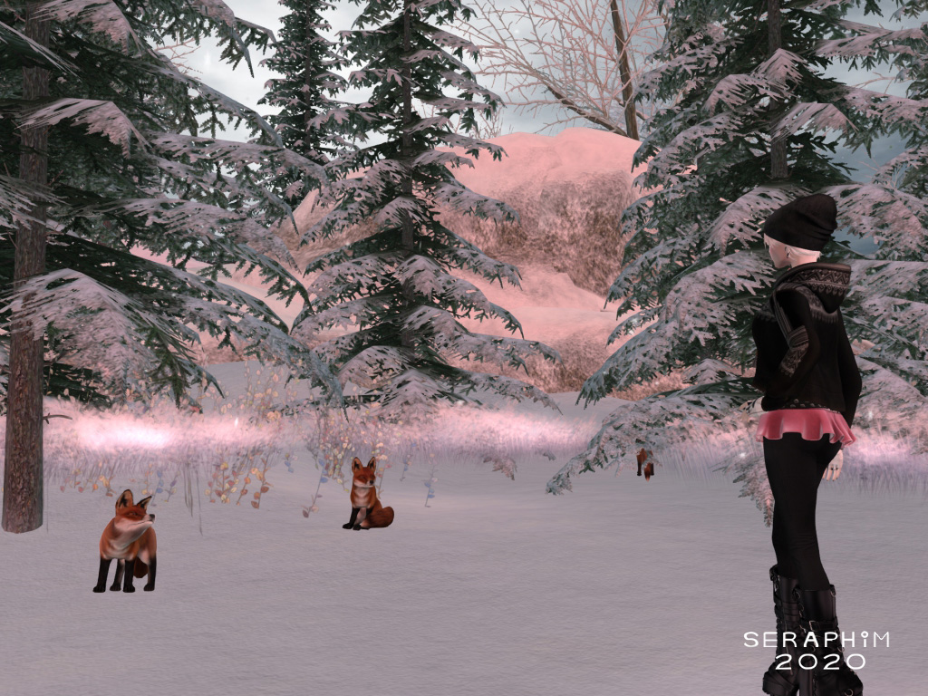SnowFalls4