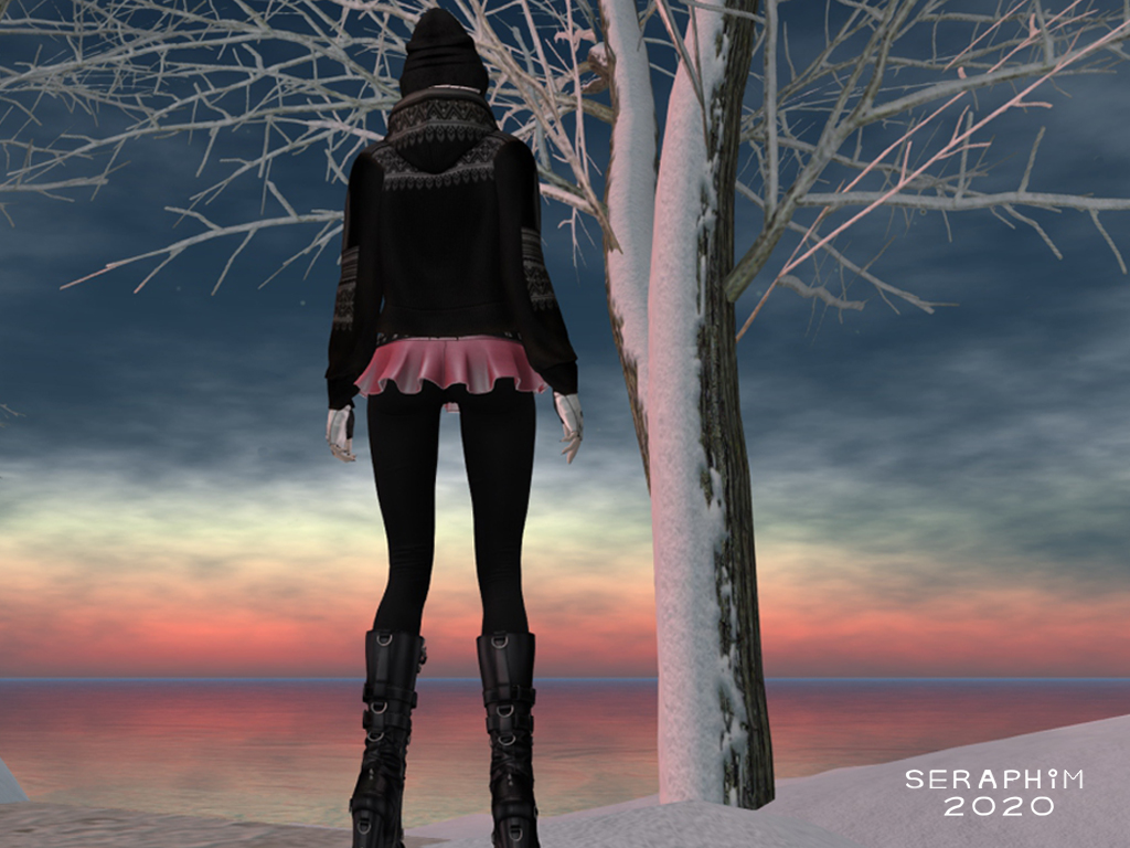 SnowFalls5