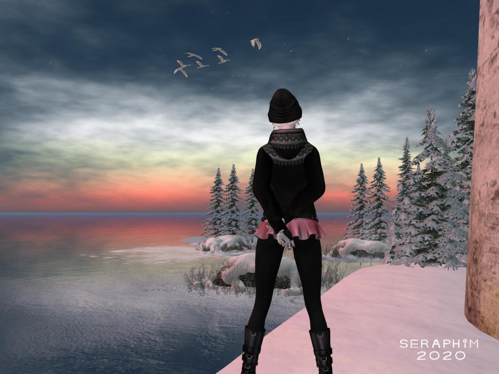SnowFalls7