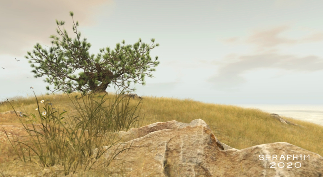 ShoreScapes4