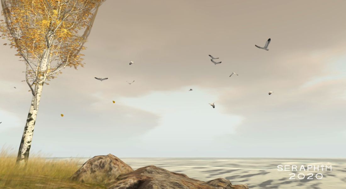 ShoreScapes7